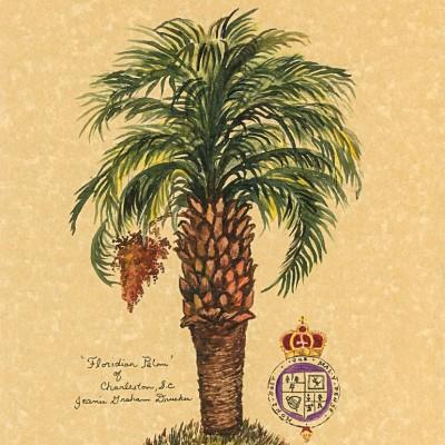 FLORIDIAN PALM OF CHARLESTON